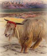 Painter Holman-Hunt's Realism