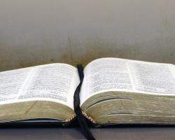 Letting the Bible Transform Your Church