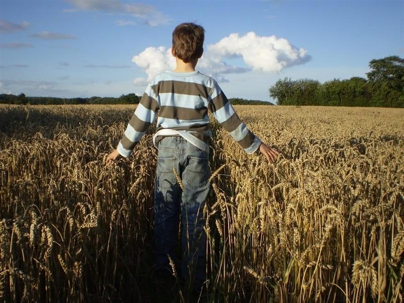 4 Cosas Por Las Cuales Estar Agradecidos Y Que Nunca Recordamos Para Terminar El Año