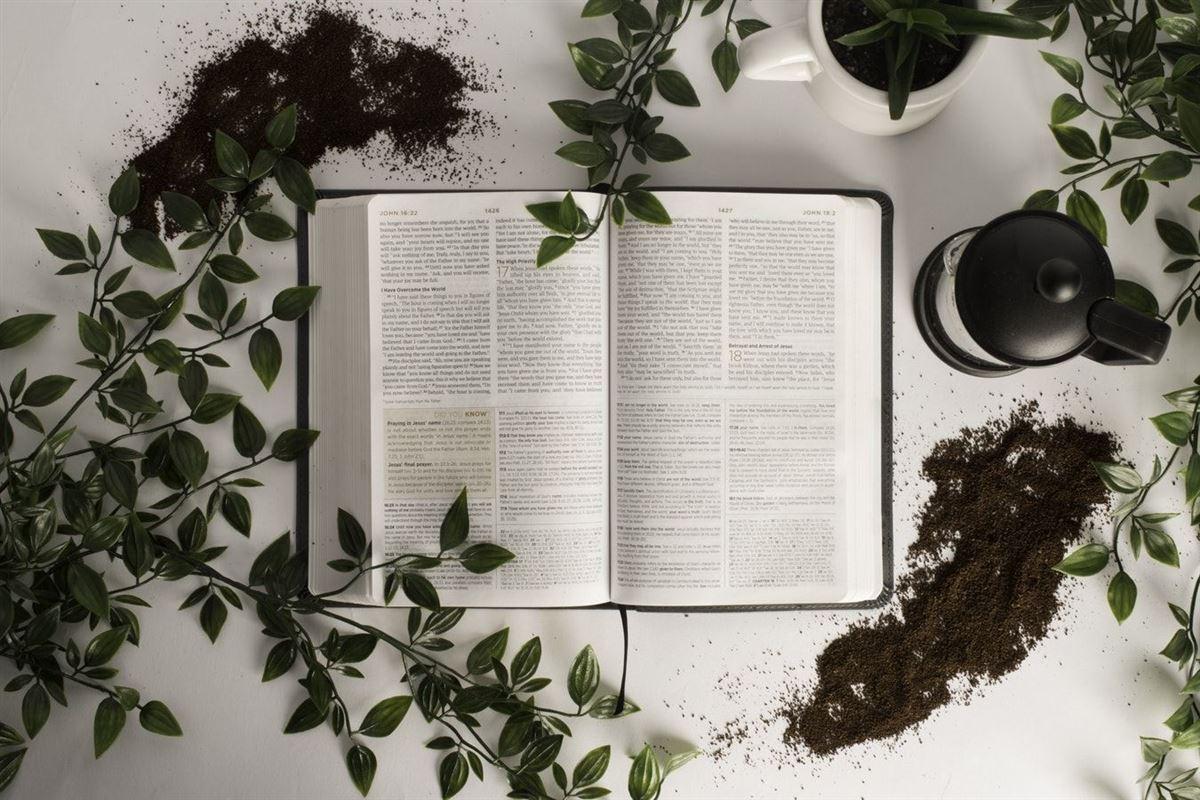 ¿Está bien dejar de orar por la salvación de un ser querido?