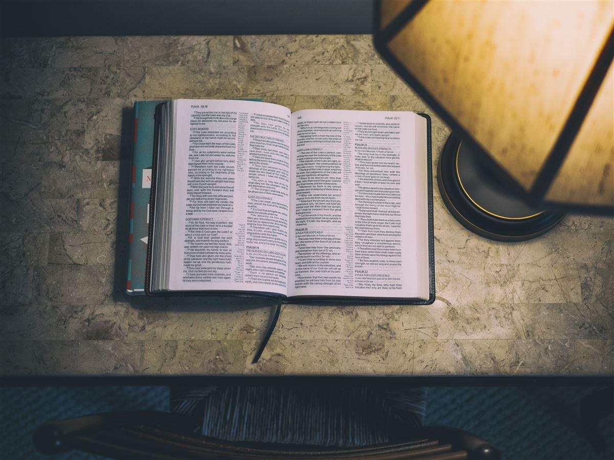 3 cosas que nunca has notado en Romanos 8:28