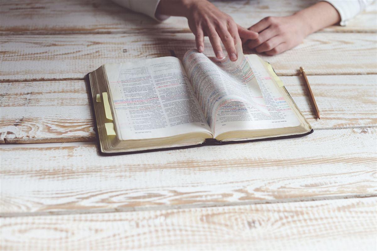 10 Libros de la Biblia que deberías leer una y otra vez