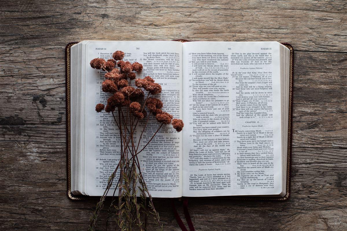 Una hermosa oración de diezmos y ofrendas
