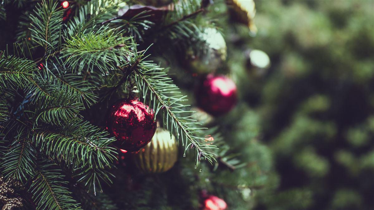 El por que necesitamos de la Navidad