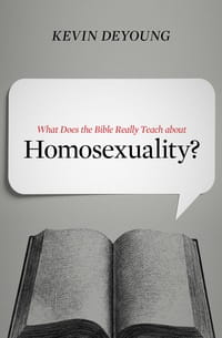 What Does the Bible Homosexuality Book