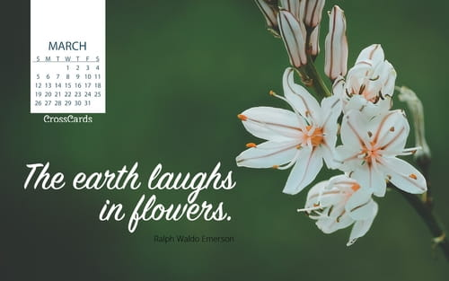 March 2017 - Earth Laughs in Flowers mobile phone wallpaper