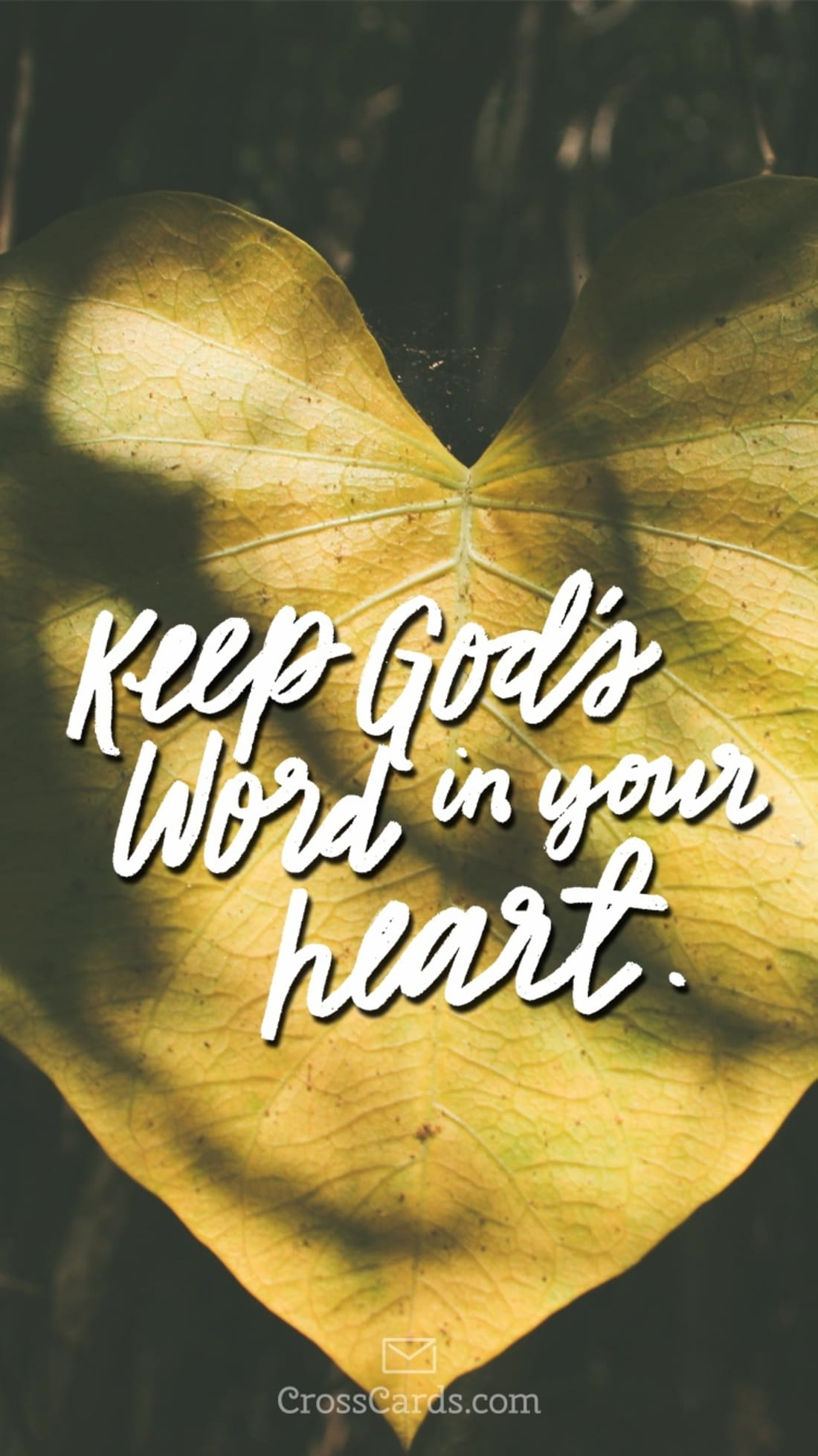 Keep God's Word in Your Heart mobile phone wallpaper
