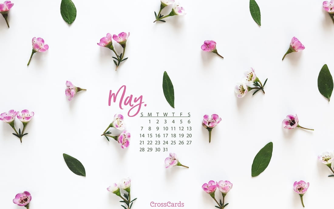 May 2017 - Pink Flowers mobile phone wallpaper