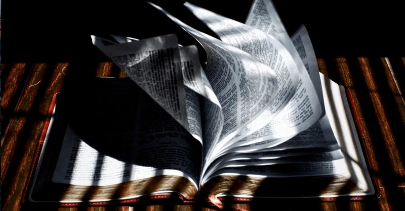 5 formas de hablar vida a un mundo quebrantado y herido