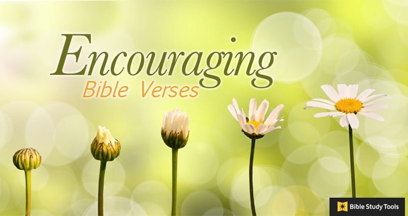 23 encouraging bible verses scripture to heal lift spirits