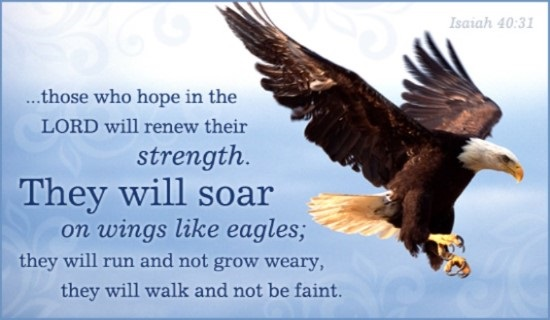 bible verses and scripture about eagles