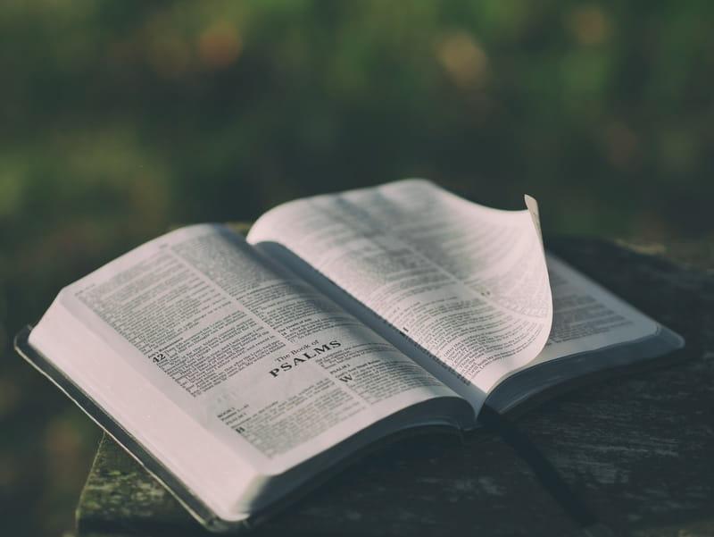 14 Top Bible Verses About False Teachers - Scripture Warnings