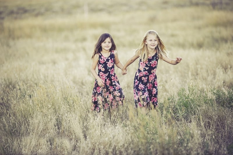 17 Bible Verses About Sisters - Inspiring Scriptures