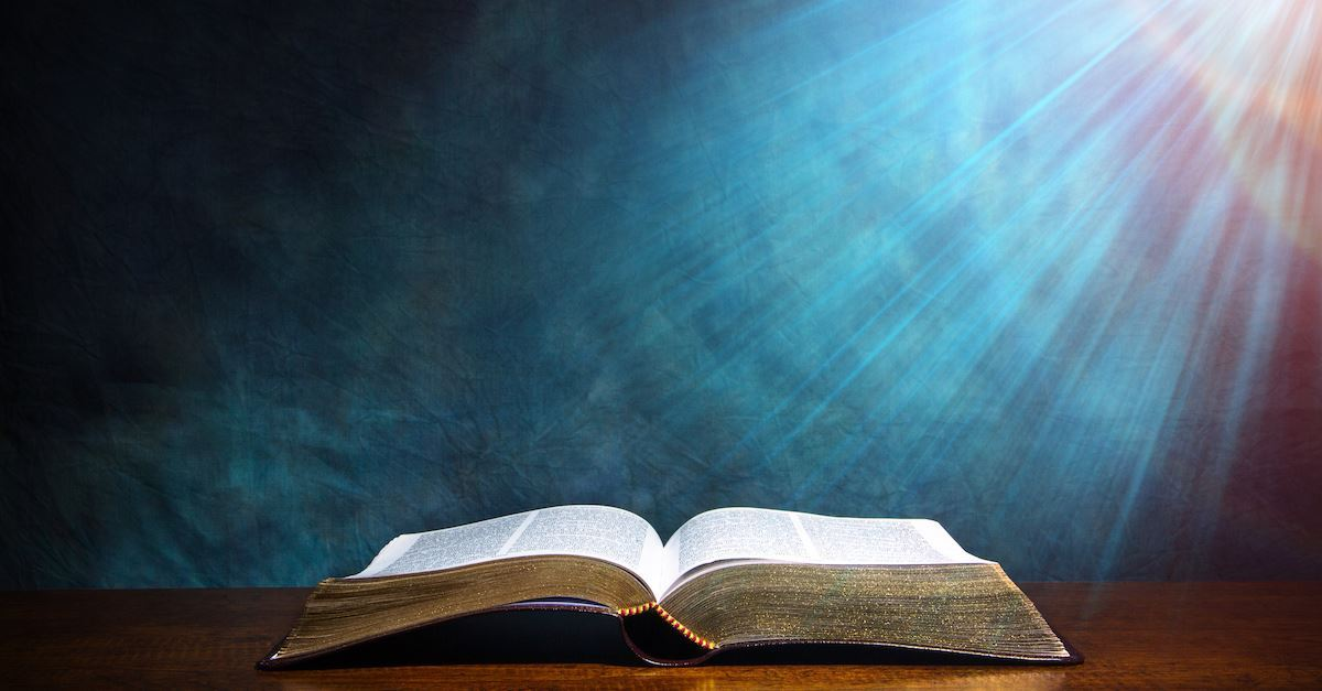 Holy Bible. Good Book. Word. Scripture. Truth. Lamp. Sword. Seed. Food.