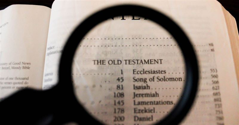 Notes on the Entire Bible-The Book of Zephaniah (John Wesleys Notes on the Entire Bible 36)