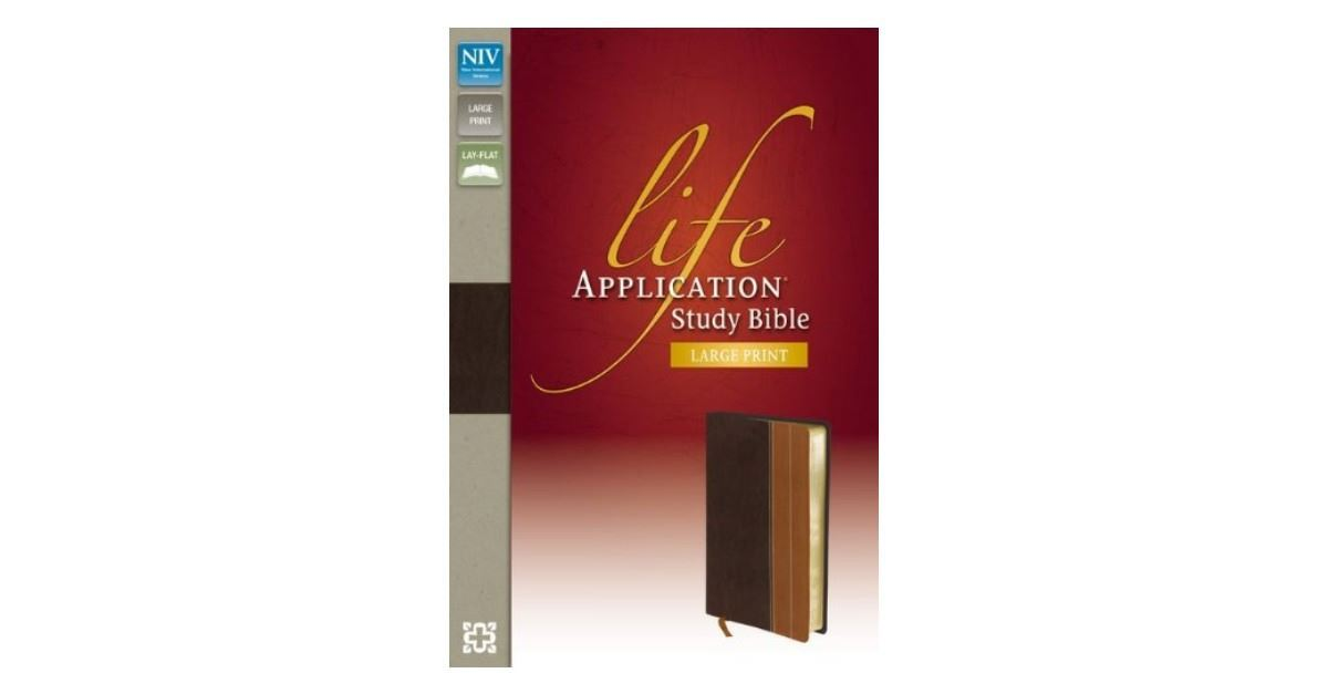 NIV Bibles - Our Favorite New International Version Bibles