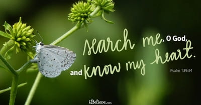 Psalm 139 - NIV Bible - You have searched me, LORD, and you