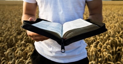 How Do You Respond to Someone Who Says the Bible Isn't True?