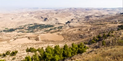 The View from Mount Nebo: Learning from Moses' Fall from Leadership