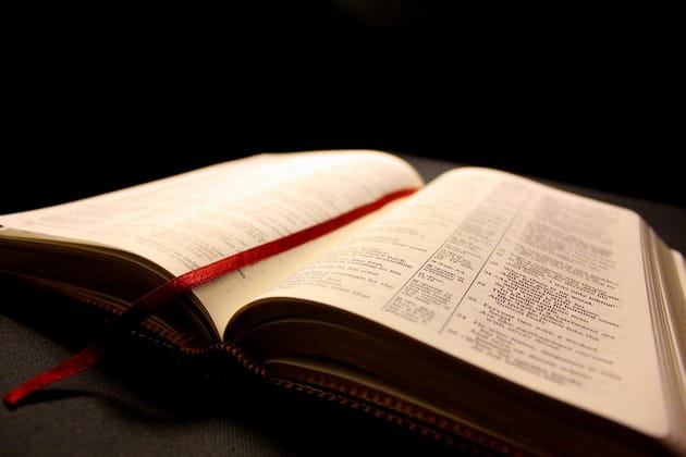3. Episcopal doctrine holds that Scripture is the revealed word of God.