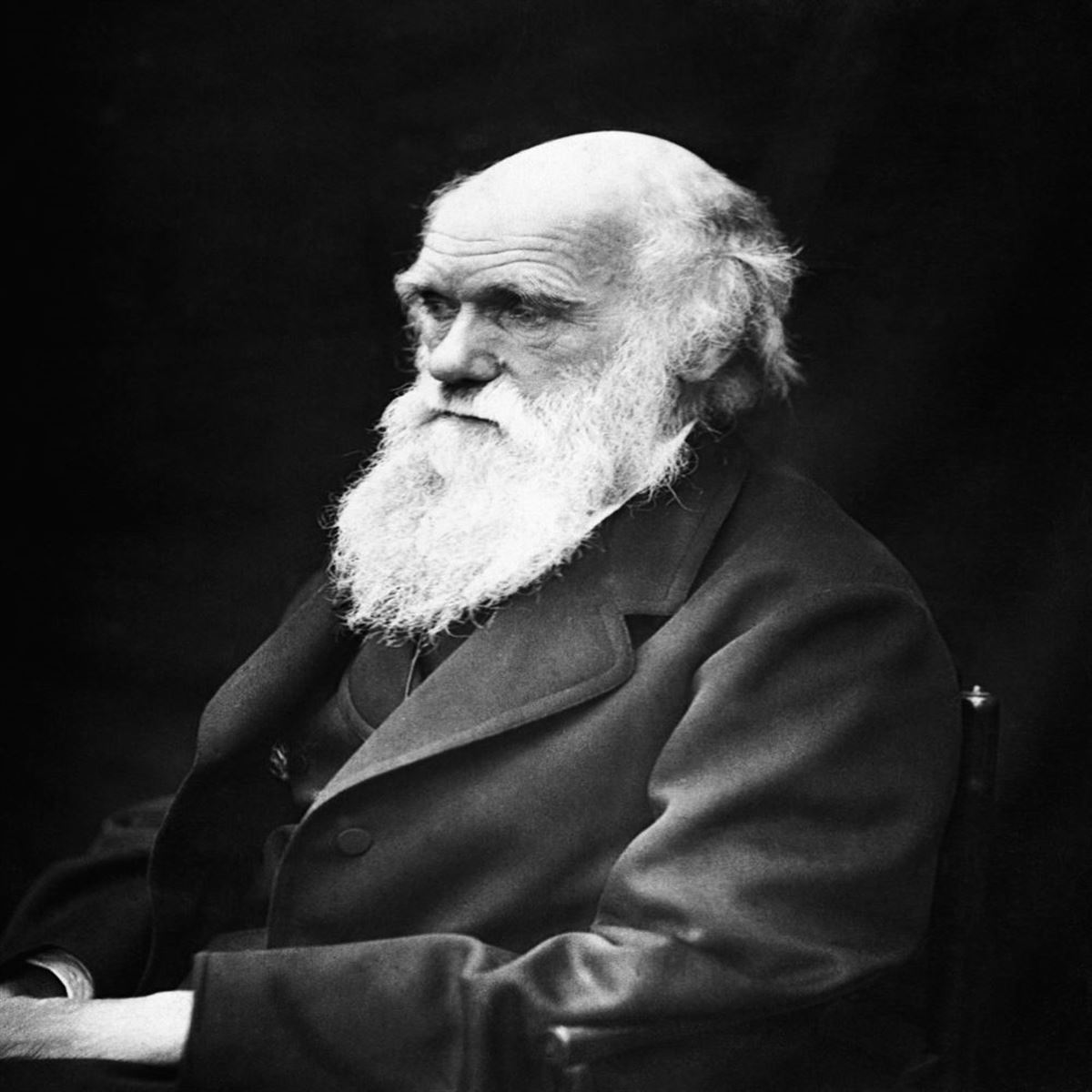 4. Quaker Reactions to the Theory of Evolution