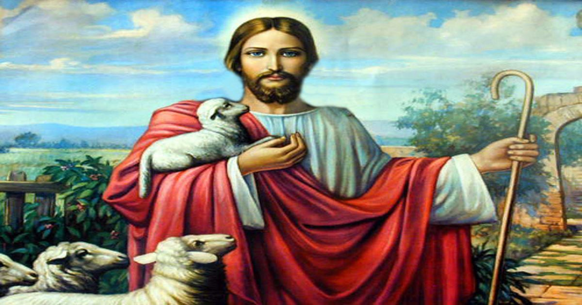 What is Yoke in the Bible? Meaning & Importance of Jesus' Teaching