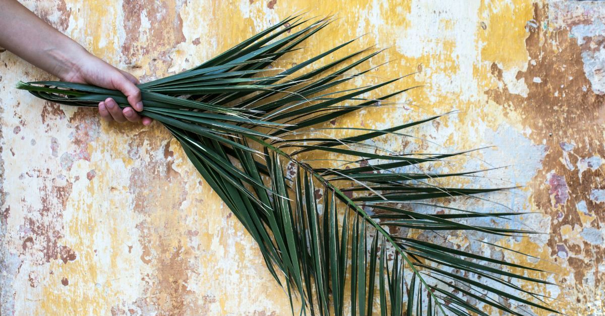 A Time Line of Holy Week, Passion Week