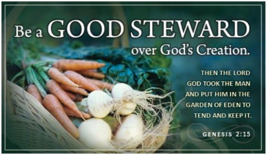 Genesis 2:15 ecard, online card
