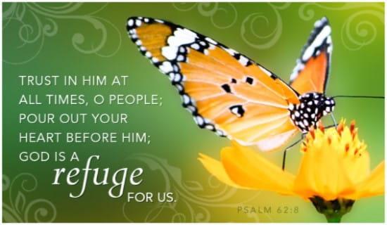 Refuge ecard, online card