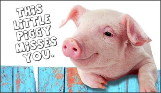 Piggy Misses You ecard, online card
