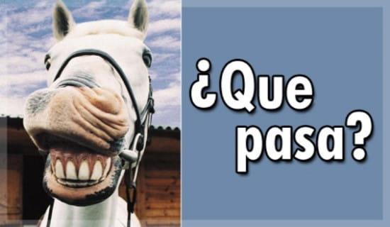 Que Pasa ecard, online card