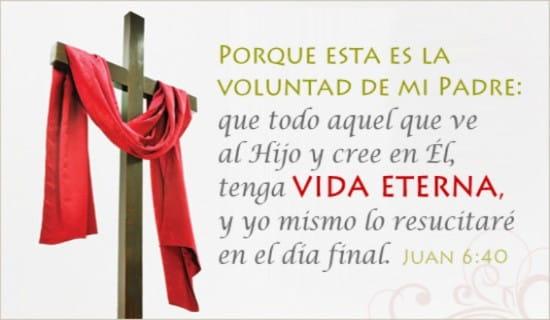 Juan 6:40 ecard, online card