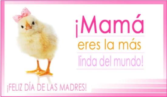 ¡Mamá eres la más linda del mundo! ecard, online card