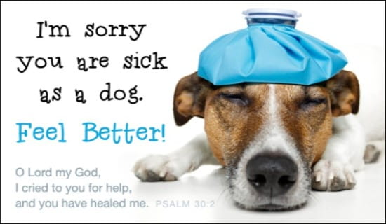 Feel Better ecard, online card