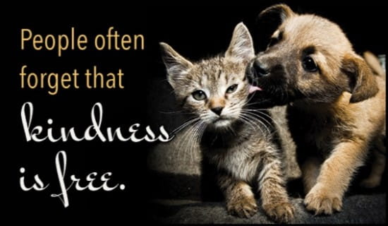 Kindness is Free ecard, online card
