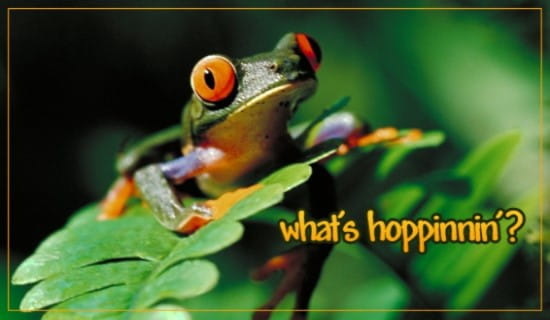 What's Hoppinnin? ecard, online card