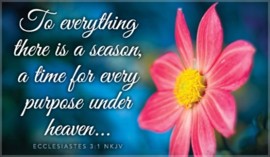 Ecclesiastes 3:1 ecard, online card