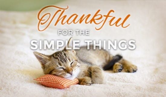 free simple things ecard