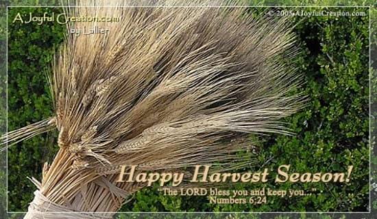 Harvest Time ecard, online card