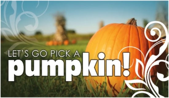 Pumpkin Patch ecard, online card