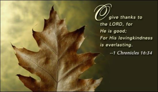 Thanksgiving - Leaves ecard, online card
