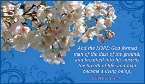 Genesis 2:7 ecard, online card