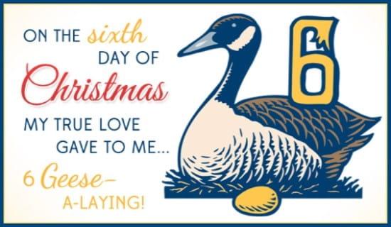 6 Geese ecard, online card