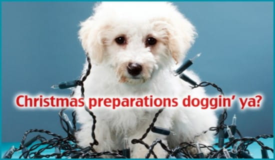 Christmas Doggin' Ya ecard, online card