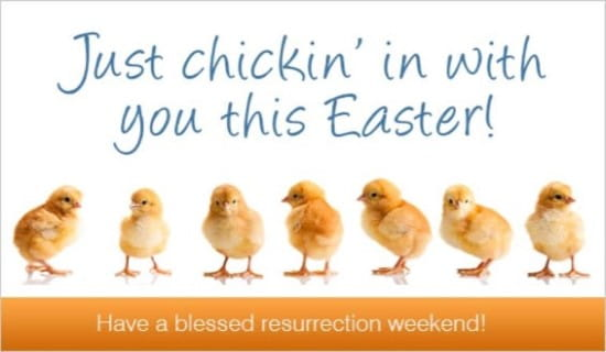 Chickin In ecard, online card