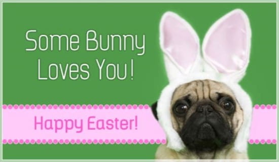 Some Bunny ecard, online card