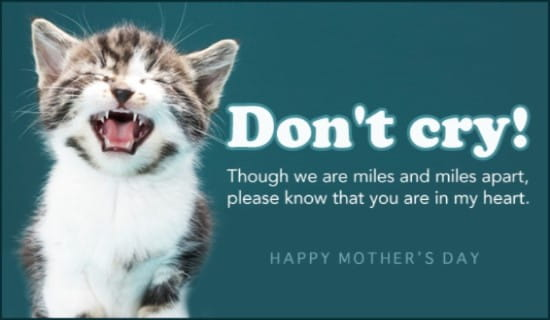 Don't Cry, Mom! ecard, online card