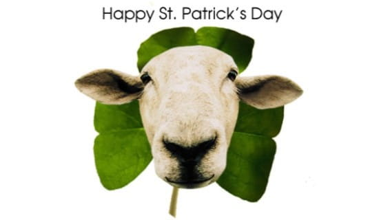 Happy St. Patrick's  ecard, online card