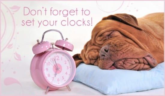 Set Clocks ecard, online card