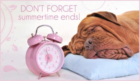 Sleepy Dog ecard, online card